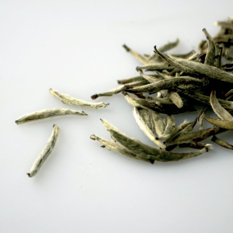silver needle white tea for skin anti-ageing